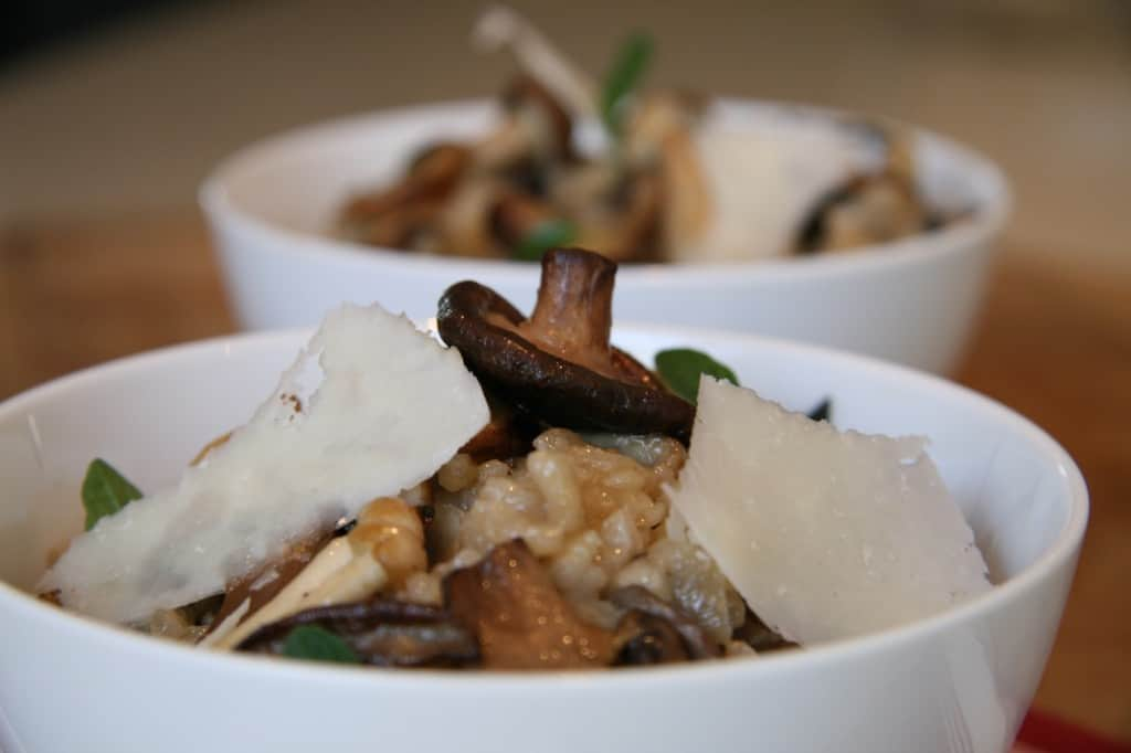 Easy Porcini Recipe