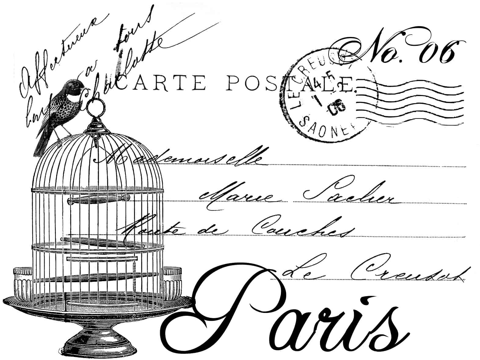 0181 French Postcard Bird Cage
